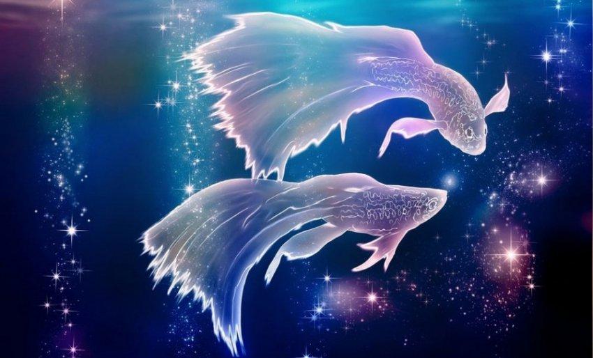 Ароматы по знакам Зодиака: стихия Воды