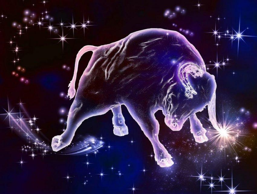 Ароматы по знакам Зодиака: стихия Земли