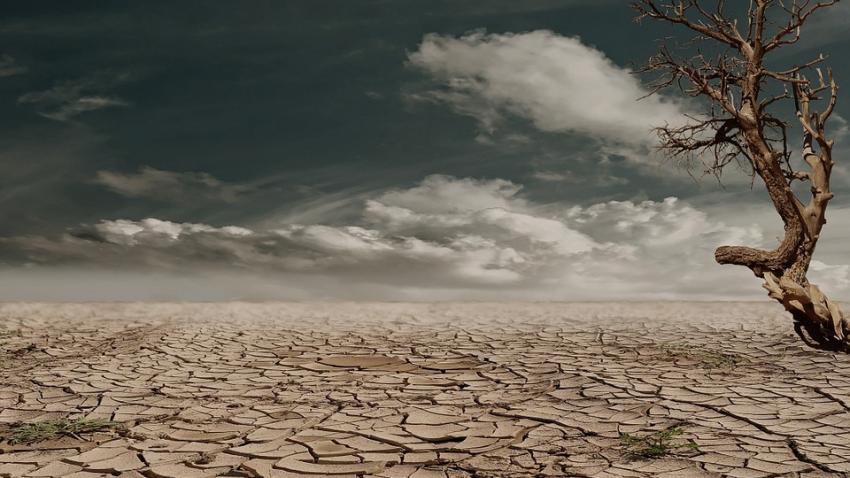 Украину постигнет климатическая катастрофа: скоро все забудут, что такое зима