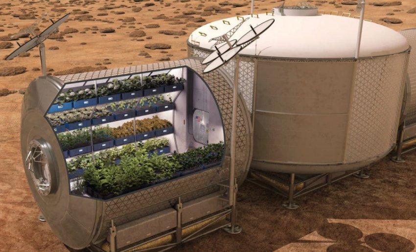 Грузия хочет первой изготовить вино на Марсе
