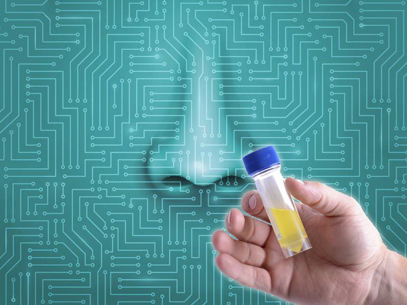 В России создали уникальный биоэлектронный нос
