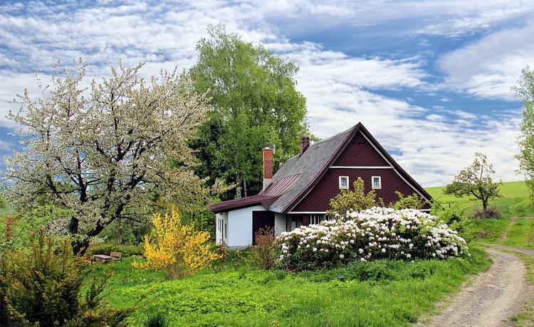 Новые налоговые льготы получили садоводы и огродники
