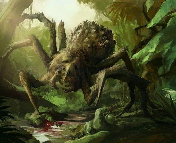 Гигантский паук Джейба Фофи: Загадка лесов Конго