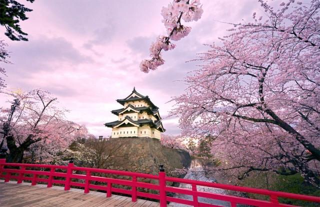 «Жадная хозяйка»: японская притча, которая поможет в жизни