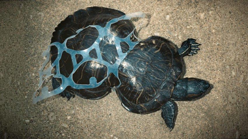 Планета задыхается под пластиком