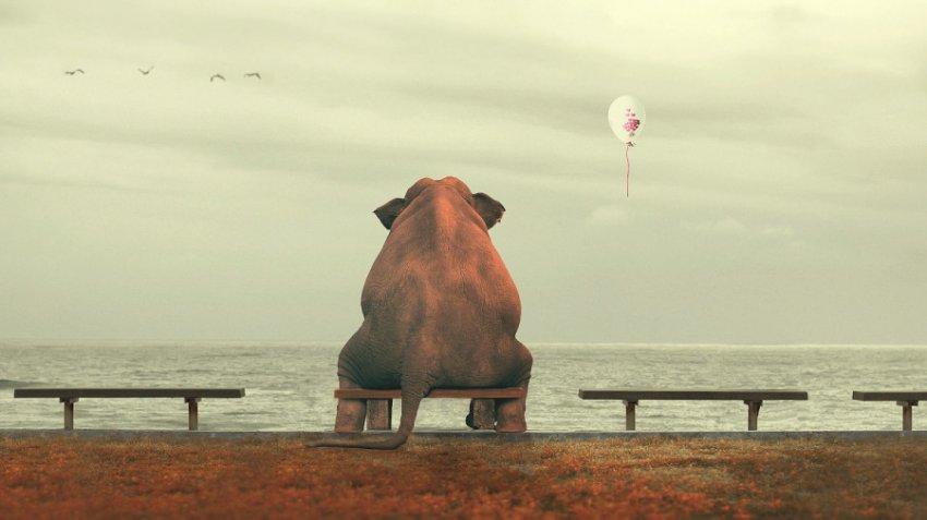 4 причины вашего одиночества