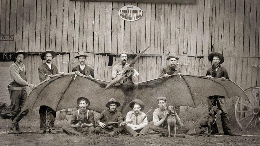 Птеродактиль в 19 веке: американские военные поймали представителя вымершего вида