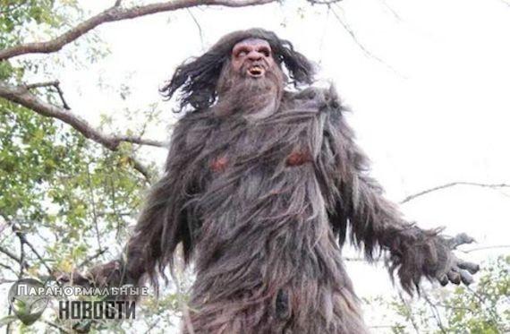 Необычное существо, живущее на горе Сент-Хеленс
