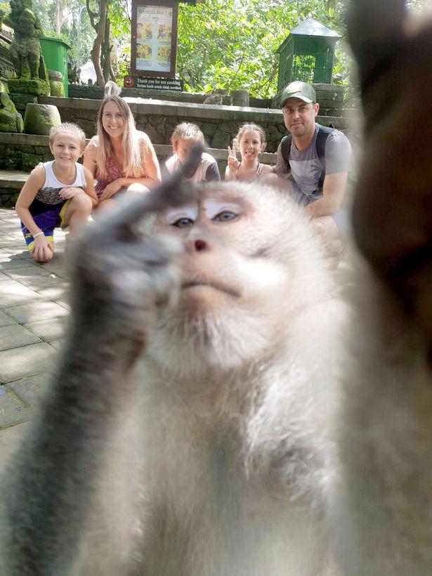 Наглая обезьяна сделала селфи с людьми и показала на камеру средний палец