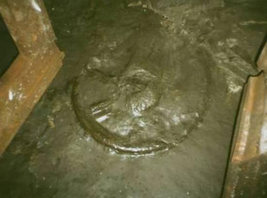 Изучение колеса возрастом 300 миллионов лет под запретом: что сейчас с артефактом
