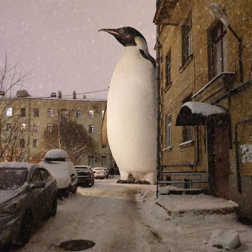 11 потрясающих фото фантастических существ, захватывающих Санкт-Петербург