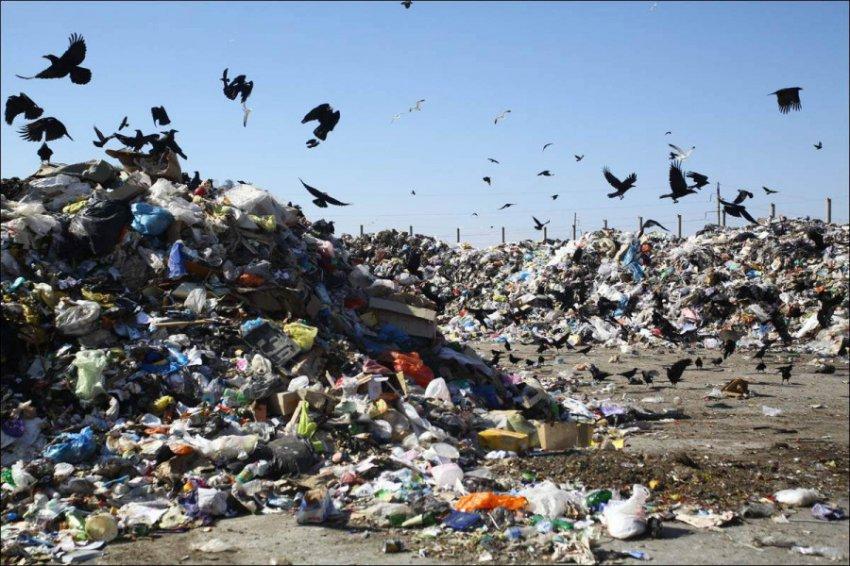 В России могут снова повысить тарифы на мусор для населения