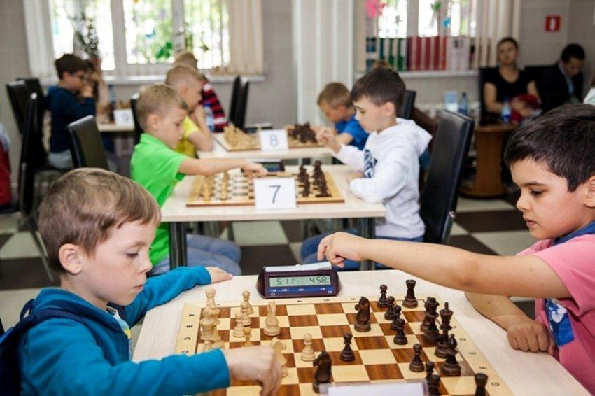 В образовательную программу хотят включить уроки по шахматам