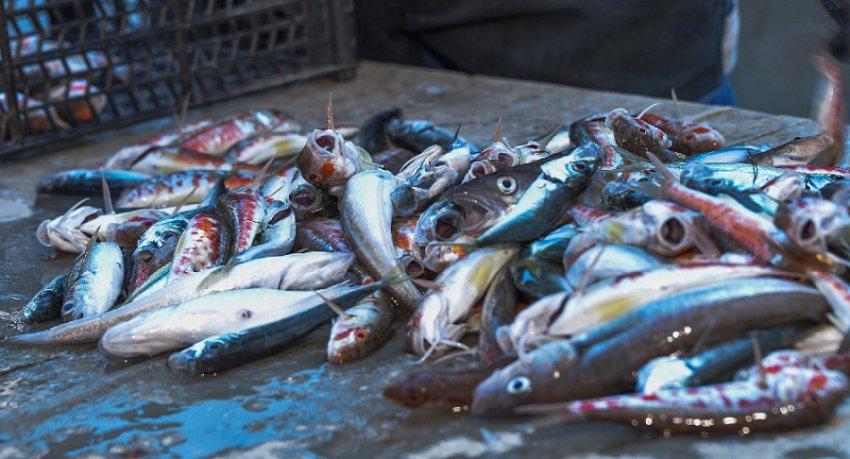 Пограничники привлекли к административной ответственности 55-летнего нарушителя правил рыболовства