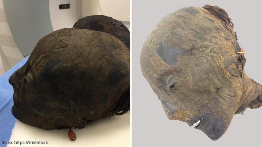 Обнаружена древнеегипетская мумия с идеально сохранившейся прической