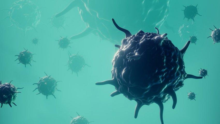Весь мир в опасности: грибковая инфекция быстро распространяется, ученые не знают что делать