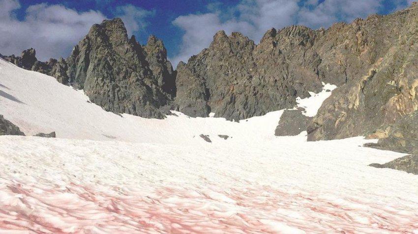 Необычное явление в парке Йосемити: выпал «кровавый» снег