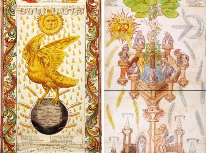Учёные разводят руками: ТОП-5 книг древности, окутанных тайной