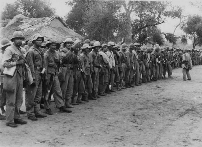 Морфий и листья коки на вооружении армии разных стран