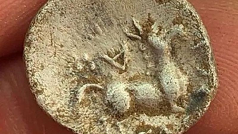 Удивительная находка в Великобритании: древняя монета с изображением осла из «Шрека»