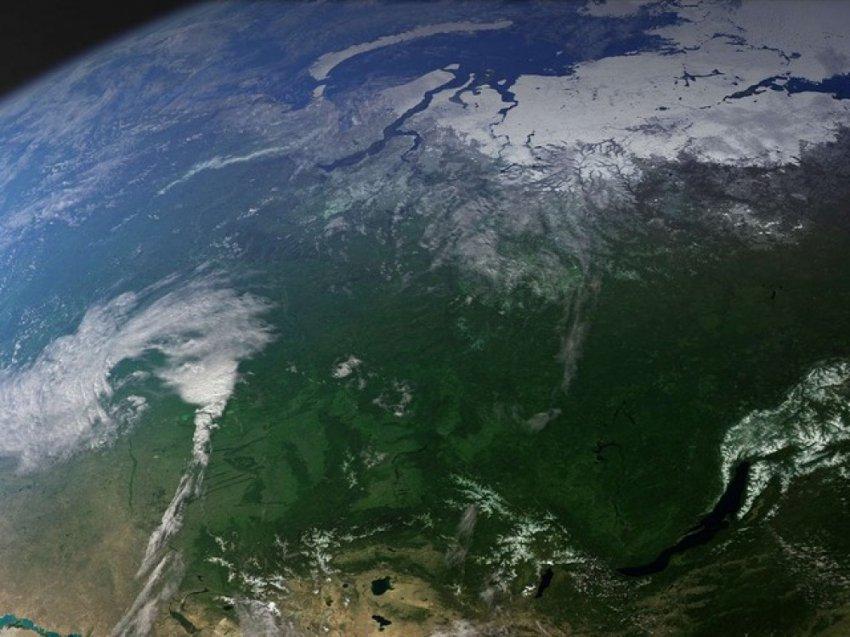 Незаконные вырубки русского леса начнут мониторить из космоса