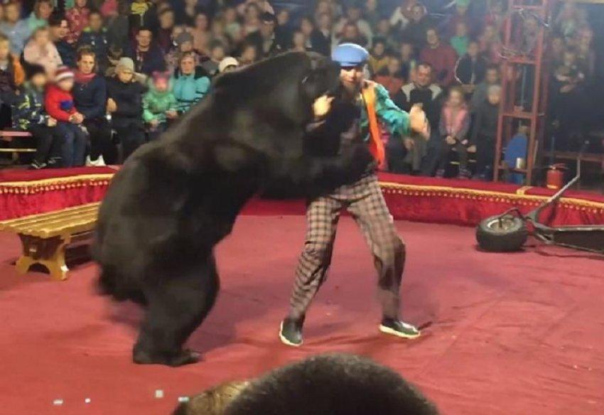 Нападение медведя в неограждённом цирке вызвало скандал