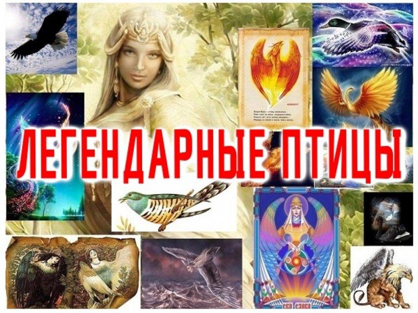 ТОП -10 Легендарных Чудо Птиц.