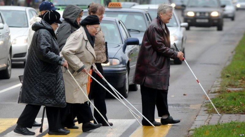 Слепота еще не приговор, а новый этап в жизни, особенно если рядом собака-проводник