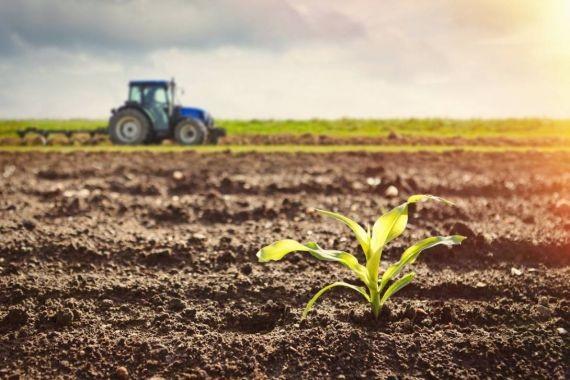 Власти Украины обещают конфисковать землю у российских предпринимателей
