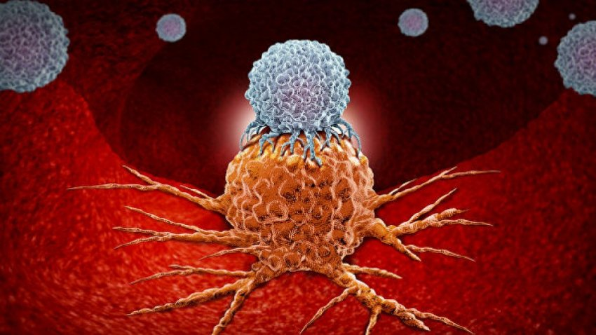 В России изобрели прорывную технологию борьбы с раком