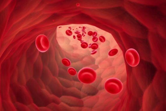 Врачи рассказали, о каком заболевании может говорить пониженный уровень гемоглобина