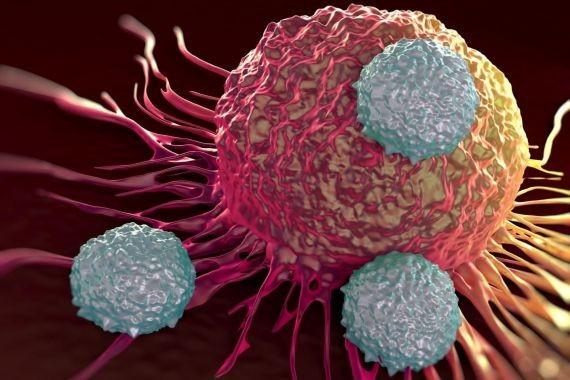 Российским ученым удалось повысить эффективность средств от рака