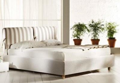 Эксперты назвали 5 комнатных растений, которые полезны для сна