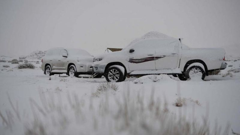 В Саудовской Аравии выпал метровый слой снега