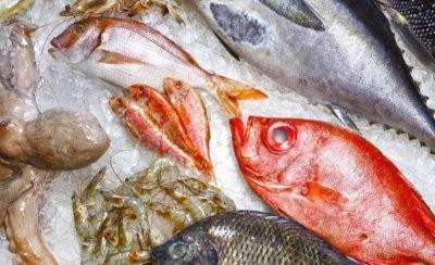 Специалист рассказала, в какой рыбе больше всего ртути