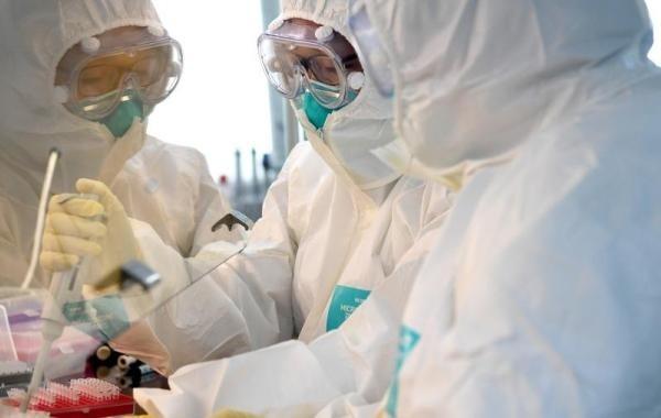 Ситуацию с коронавирусом назвали контролируемой