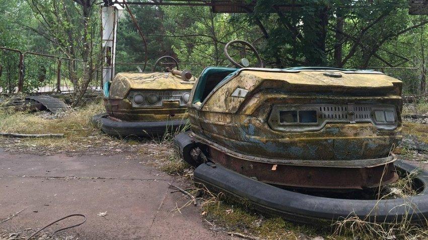 В Чернобыле обнаружили грибок, которому не страшна радиация
