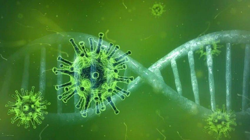 Уханьский коронавирус может распространяться по воздуху