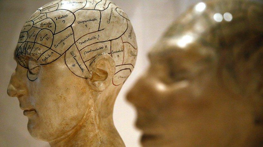 Нейрофизиолог открывает завесу о природе сознания и чувстве любви