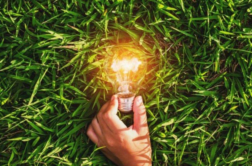 Электричество из воздуха и водорослей вместо углеводородного топива