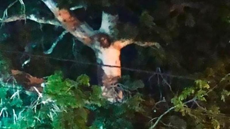 В Колумбии обнаружили дерево, которое очень похоже на Иисуса Христа