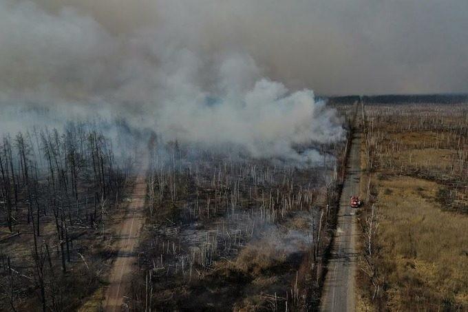Пожар в Чернобыльской зоне удалось потушить: угрозы радиационного загрязнения нет
