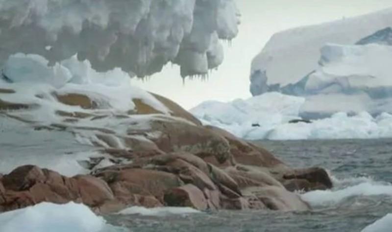 Возле Южного полюса обнаружили неизвестный остров