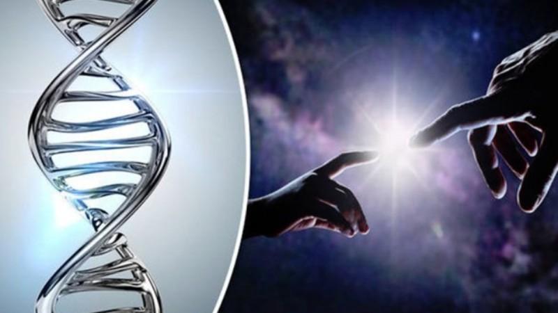 Уважаемый хирург заявил, что человеческое тело не проходило через эволюцию