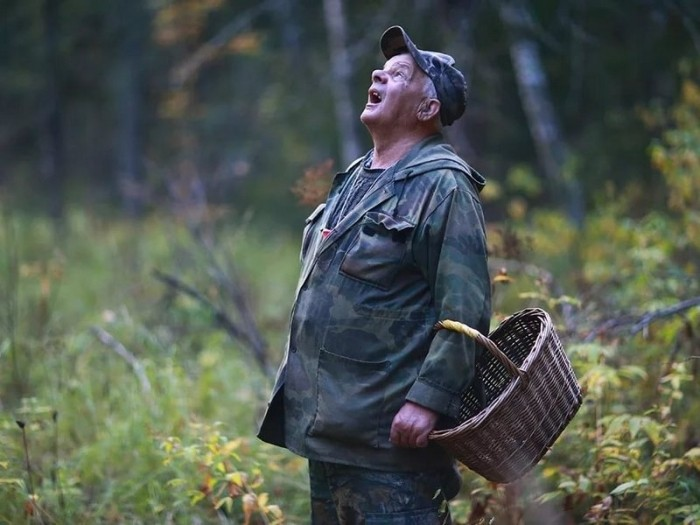 Как читать лесные метки чтобы не заблудиться?