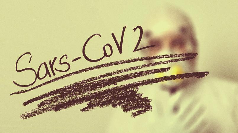 COVID-19 мог появиться в результате скрещивания двух вирусов