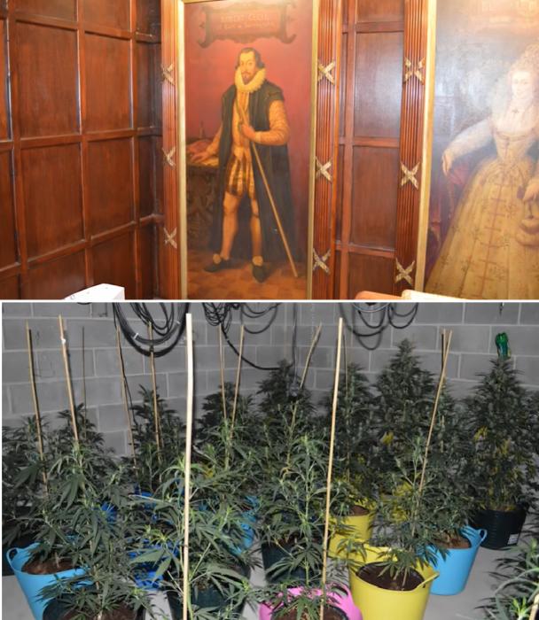 Наркоторговец замаскировал под сарай роскошный особняк с коноплёй