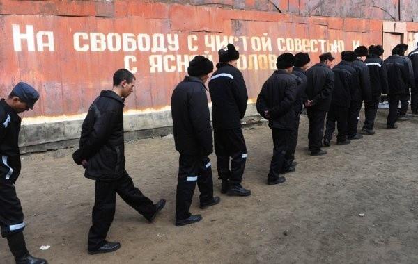Россиян интересует вопрос о возможности проведения амнистии в 2020 году
