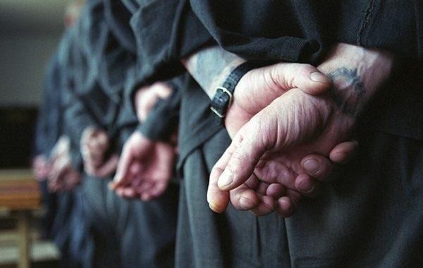 В Госдуму внесены законопроекты о проведении уголовной амнистии