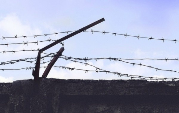Амнистию для заключенных предложили перенести на 2021 год